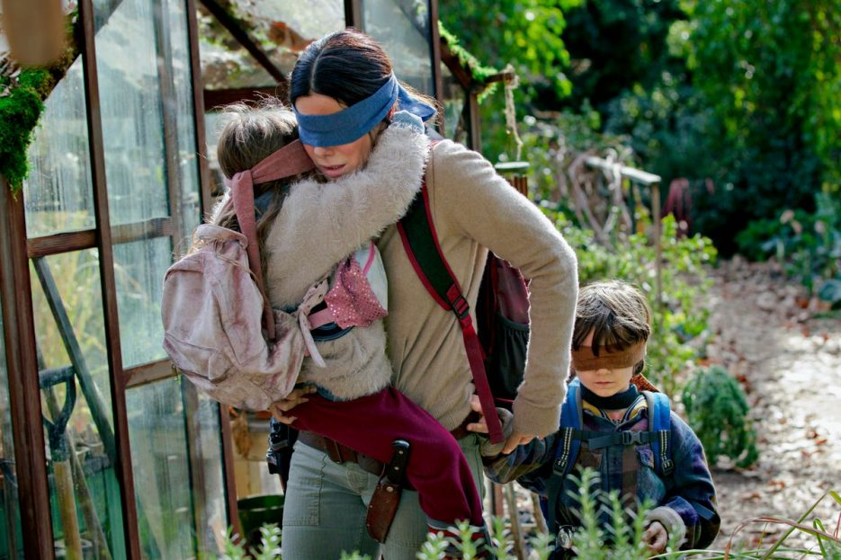 bird box review 1