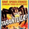 tarantula blu-ray