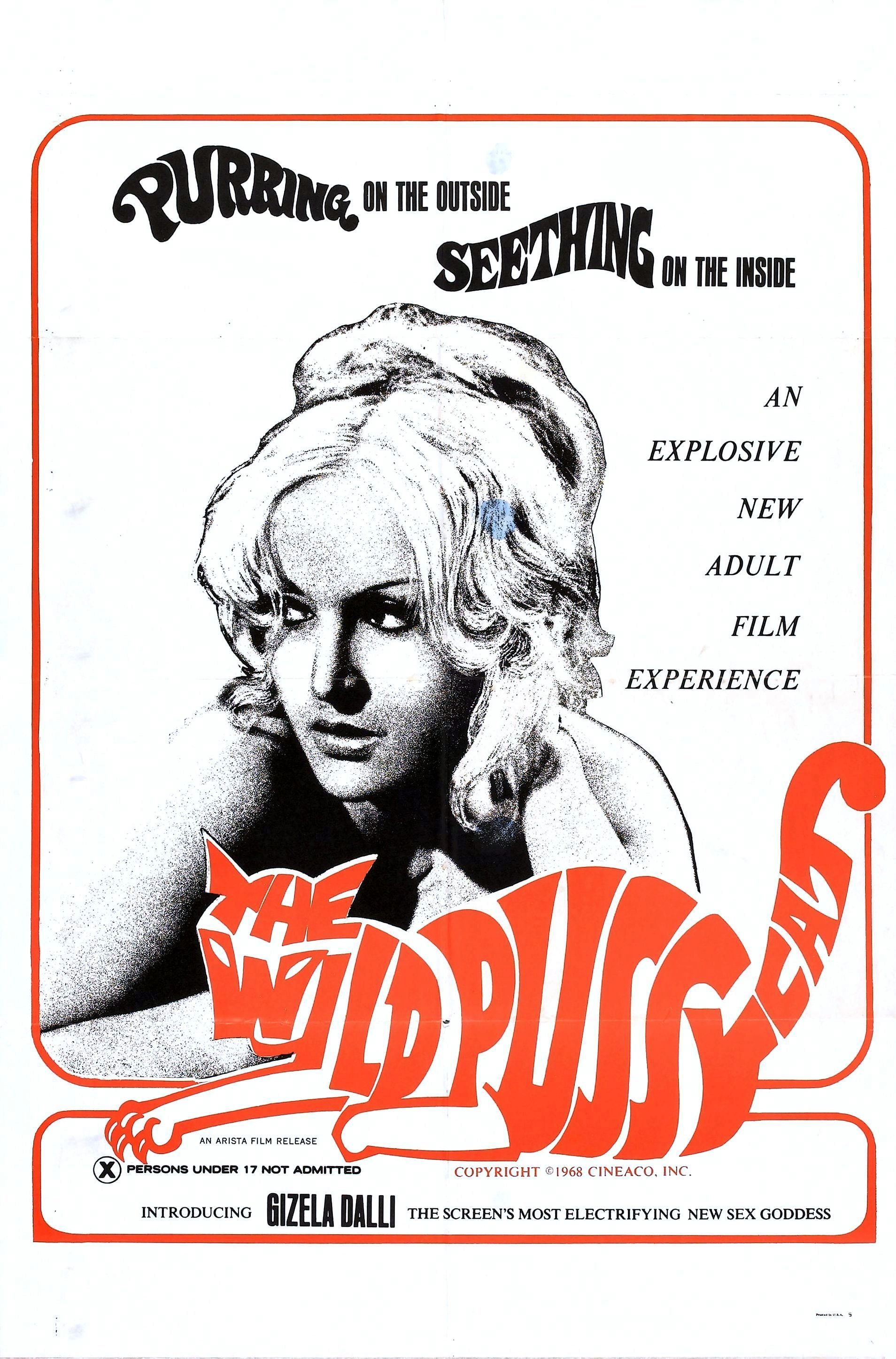 the wild pussycat poster