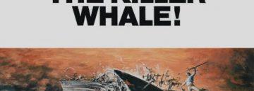 orca-the-killer-whale-56602ec03f751